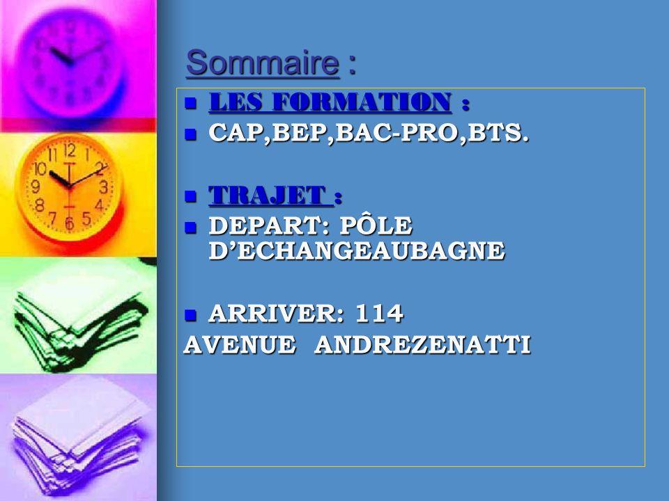 Sommaire : LES FORMATION : LES FORMATION : CAP,BEP,BAC-PRO,BTS. CAP,BEP,BAC-PRO,BTS. TRAJET : TRAJET : DEPART: PÔLE DECHANGEAUBAGNE DEPART: PÔLE DECHA