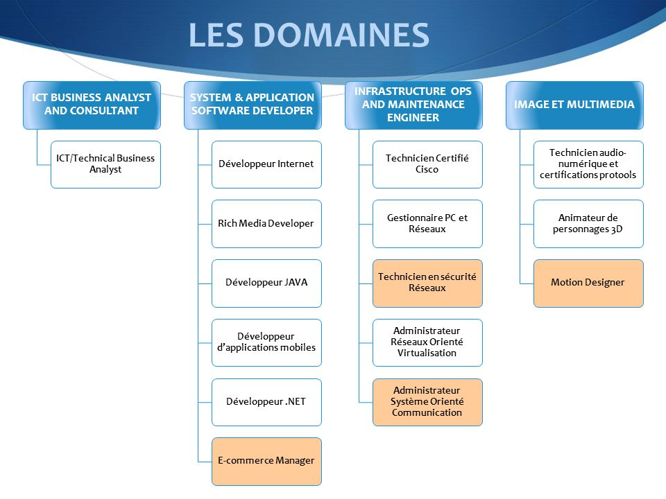 LES DOMAINES ICT BUSINESS ANALYST AND CONSULTANT ICT/Technical Business Analyst SYSTEM & APPLICATION SOFTWARE DEVELOPER Développeur InternetRich Media