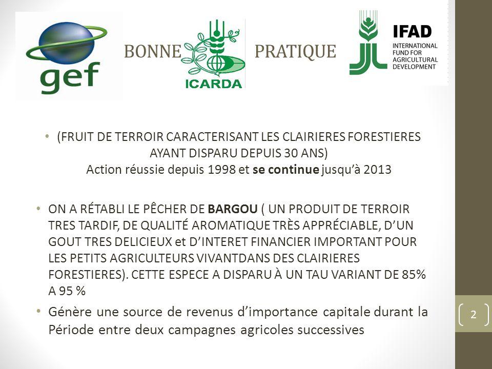 BONNE PRATIQUE (FRUIT DE TERROIR CARACTERISANT LES CLAIRIERES FORESTIERES AYANT DISPARU DEPUIS 30 ANS) Action réussie depuis 1998 et se continue jusquà 2013 ON A RÉTABLI LE PÊCHER DE BARGOU ( UN PRODUIT DE TERROIR TRES TARDIF, DE QUALITÉ AROMATIQUE TRÈS APPRÉCIABLE, DUN GOUT TRES DELICIEUX et DINTERET FINANCIER IMPORTANT POUR LES PETITS AGRICULTEURS VIVANTDANS DES CLAIRIERES FORESTIERES).