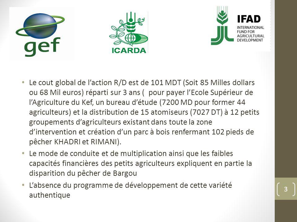 Le cout global de laction R/D est de 101 MDT (Soit 85 Milles dollars ou 68 Mil euros) réparti sur 3 ans ( pour payer lEcole Supérieur de lAgriculture du Kef, un bureau détude (7200 MD pour former 44 agriculteurs) et la distribution de 15 atomiseurs (7027 DT) à 12 petits groupements dagriculteurs existant dans toute la zone dintervention et création dun parc à bois renfermant 102 pieds de pêcher KHADRI et RIMANI).