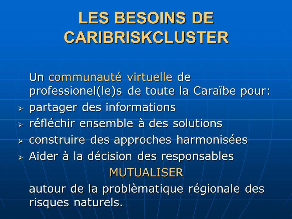 LES BESOINS DE CARIBRISKCLUSTER Un communauté virtuelle de professionel(le)s de toute la Caraïbe pour: partager des informations partager des informations réfléchir ensemble à des solutions réfléchir ensemble à des solutions construire des approches harmonisées construire des approches harmonisées Aider à la décision des responsables Aider à la décision des responsablesMUTUALISER autour de la problèmatique régionale des risques naturels.