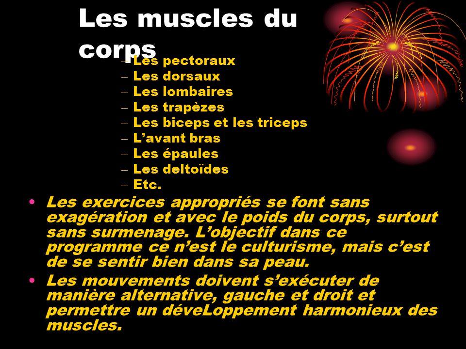 Les muscles du corps – Les pectoraux – Les dorsaux – Les lombaires – Les trapèzes – Les biceps et les triceps – Lavant bras – Les épaules – Les deltoï