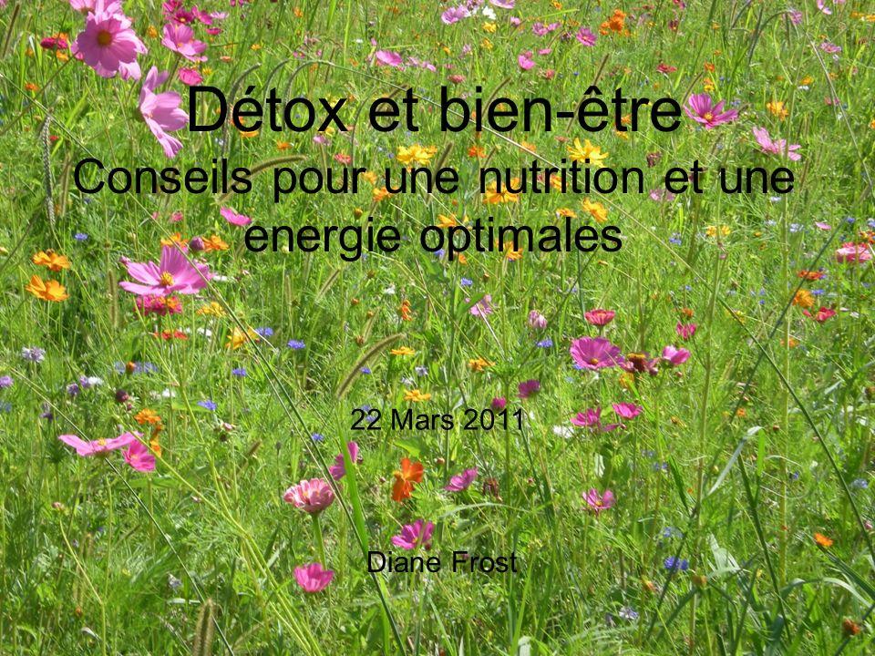 Détox et bien-être Conseils pour une nutrition et une energie optimales Diane Frost 22 Mars 2011
