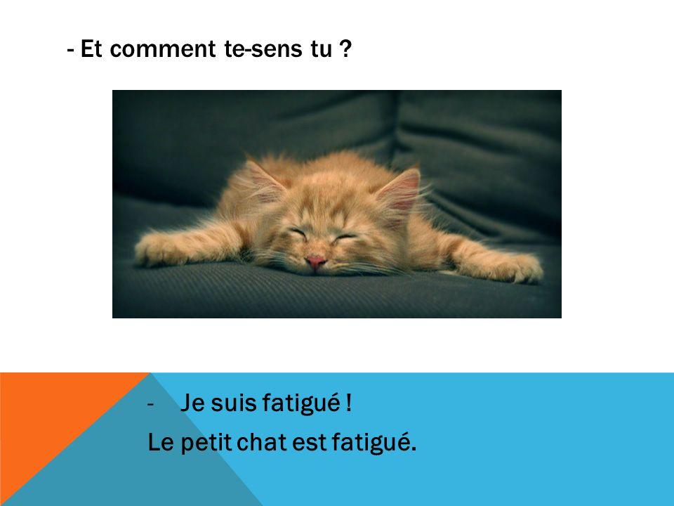 - Et comment te-sens tu ? -Je suis fatigué ! Le petit chat est fatigué.
