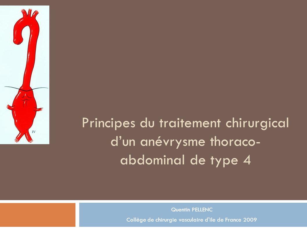Principes du traitement chirurgical dun anévrysme thoraco- abdominal de type 4 Quentin PELLENC Collège de chirurgie vasculaire d ile de France 2009