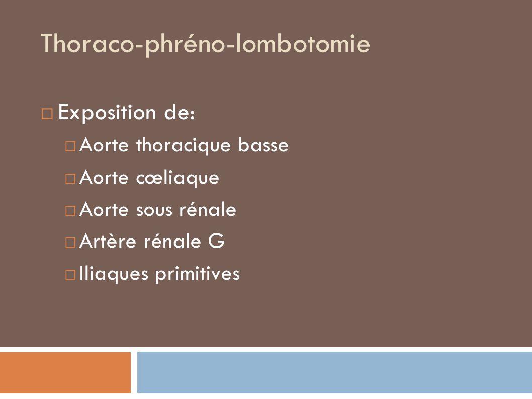 Thoraco-phréno-lombotomie Exposition de: Aorte thoracique basse Aorte cœliaque Aorte sous rénale Artère rénale G Iliaques primitives
