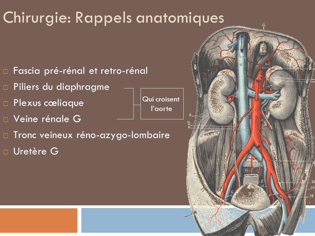 Anastomose distale Kieffer E, Chirurgie des anévrysmes de l aorte thoracoabdominale, EMC Elsevier-Masson 1993