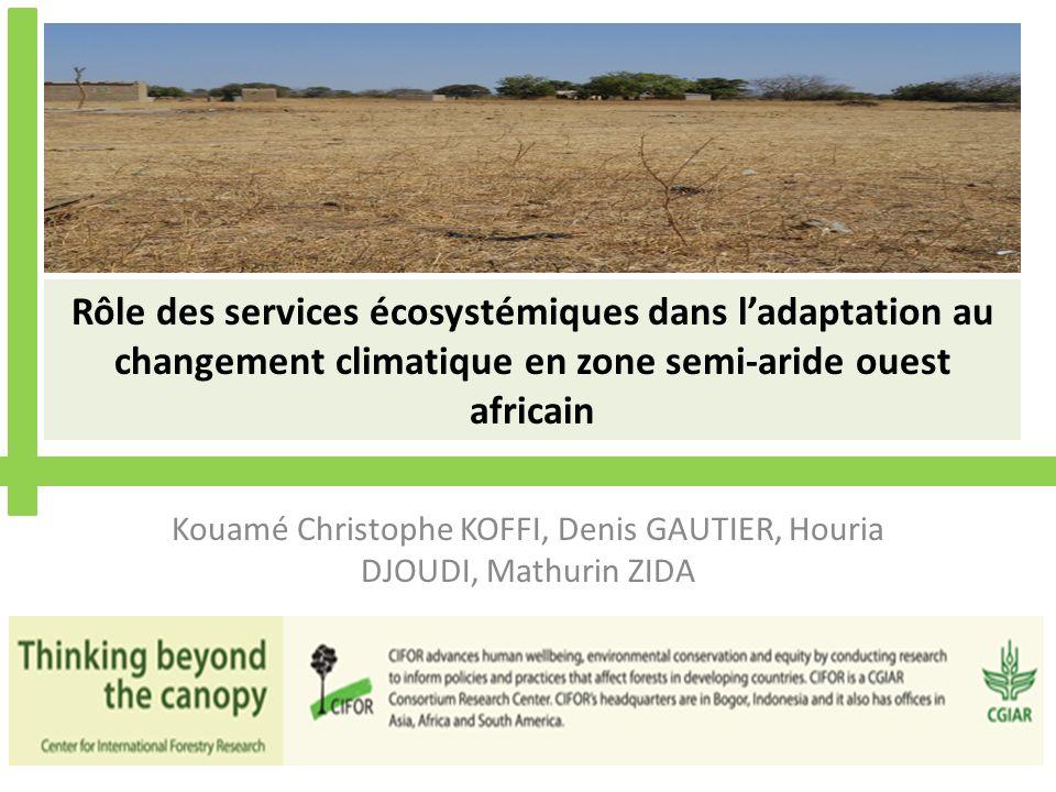 Rôle des services écosystémiques dans ladaptation au changement climatique en zone semi-aride ouest africain Kouamé Christophe KOFFI, Denis GAUTIER, Houria DJOUDI, Mathurin ZIDA