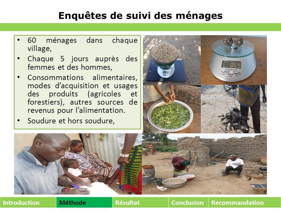 Enquêtes de suivi des ménages 60 ménages dans chaque village, Chaque 5 jours auprès des femmes et des hommes, Consommations alimentaires, modes dacquisition et usages des produits (agricoles et forestiers), autres sources de revenus pour lalimentation.
