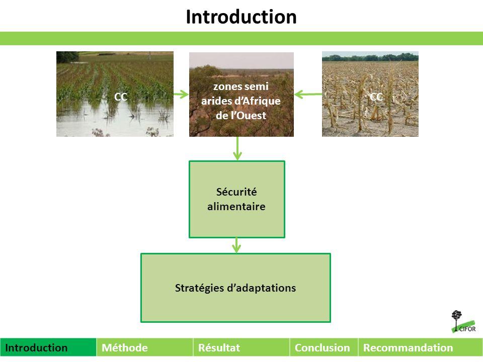 Problématique et Objectifs Quel rôle pour les forêts sèches dAfrique dans ladaptation au Changement Climatique.