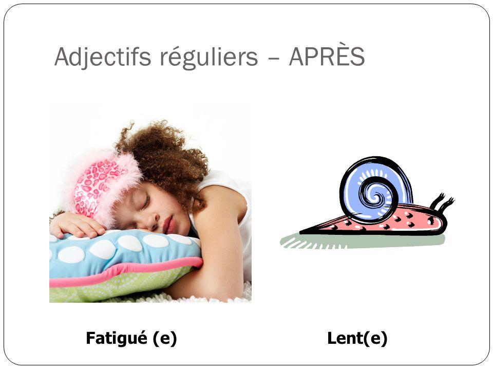 Adjectifs réguliers – APRÈS Fatigué (e)Lent(e)