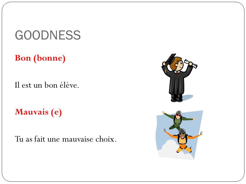 GOODNESS Bon (bonne) Il est un bon élève. Mauvais (e) Tu as fait une mauvaise choix.