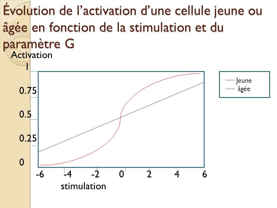Évolution de lactivation dune cellule jeune ou âgée en fonction de la stimulation et du paramètre G Activation 1 0.75 0.5 0.25 0 -6-4-20246 stimulation Jeune âgée
