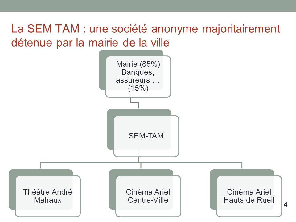 La SEM TAM : une société anonyme majoritairement détenue par la mairie de la ville Mairie (85%) Banques, assureurs … (15%) SEM-TAM Théâtre André Malraux Cinéma Ariel Centre-Ville Cinéma Ariel Hauts de Rueil 4