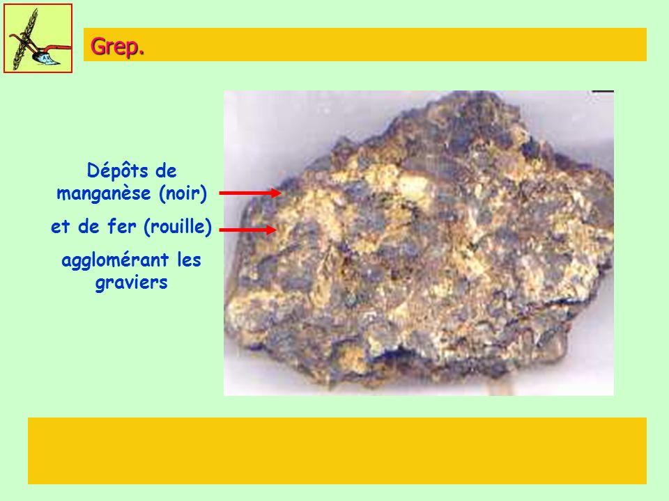 Grep. Dépôts de manganèse (noir) et de fer (rouille) agglomérant les graviers