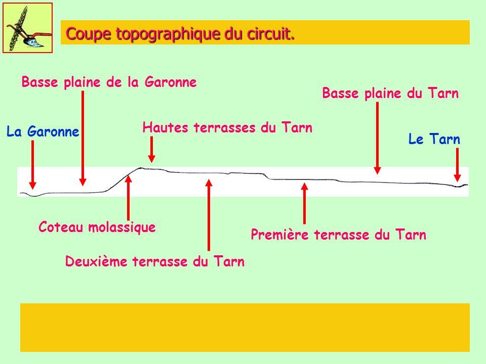 Coupe topographique du circuit.