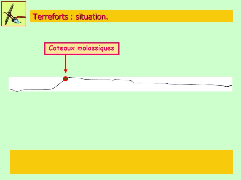 Terreforts : situation. Coteaux molassiques