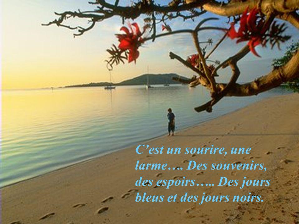 La vie cest la pluie… cest le beau temps…… cest la rosée du matin et la douceur dun coucher de soleil.