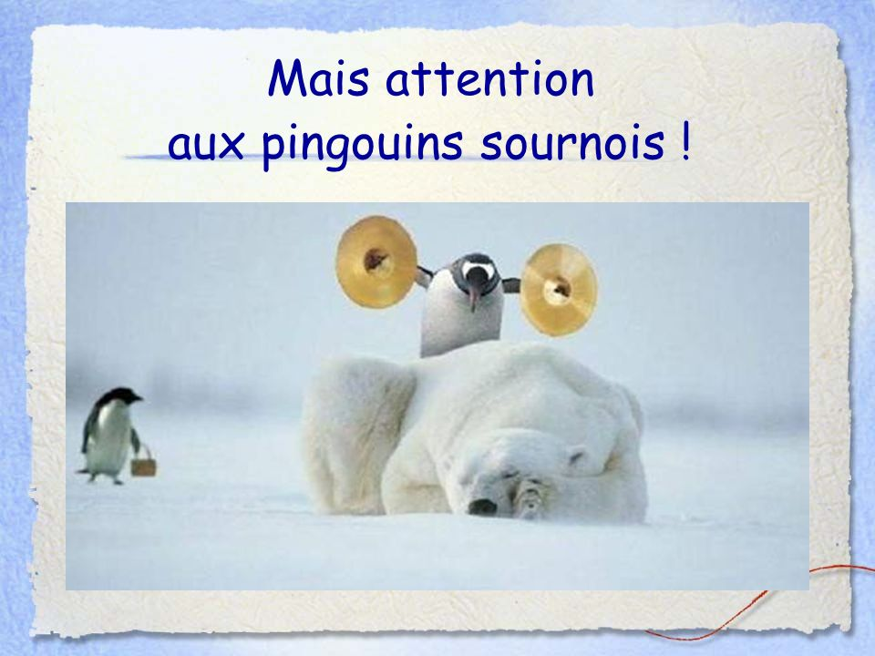 Mais attention aux pingouins sournois !