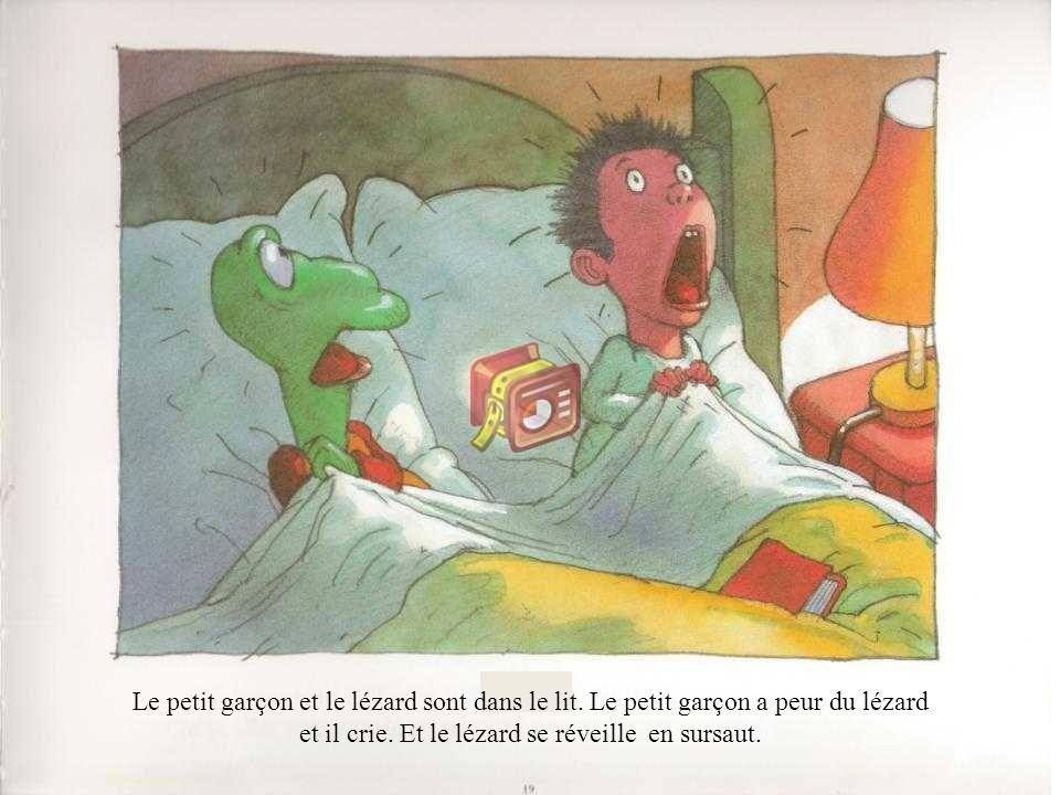 Le petit garçon et le lézard sont dans le lit. Le petit garçon a peur du lézard et il crie. Et le lézard se réveille en sursaut.