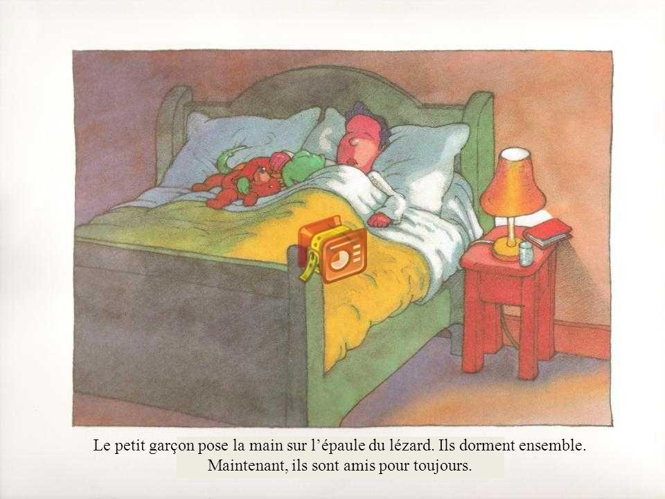 Le petit garçon pose la main sur lépaule du lézard. Ils dorment ensemble. Maintenant, ils sont amis pour toujours.