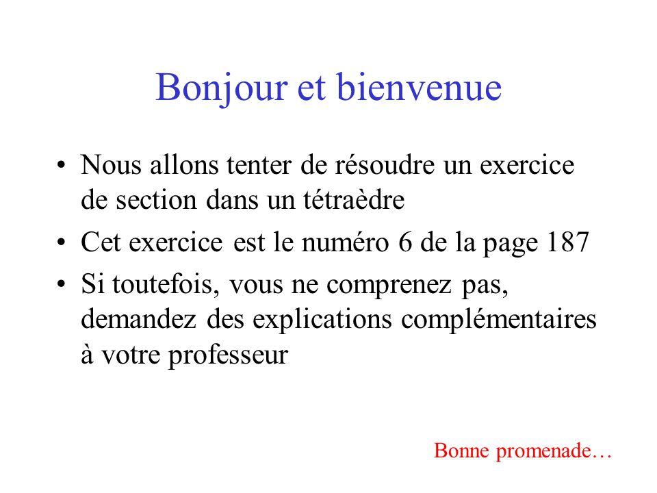 Bonjour et bienvenue Nous allons tenter de résoudre un exercice de section dans un tétraèdre Cet exercice est le numéro 6 de la page 187 Si toutefois, vous ne comprenez pas, demandez des explications complémentaires à votre professeur Bonne promenade…