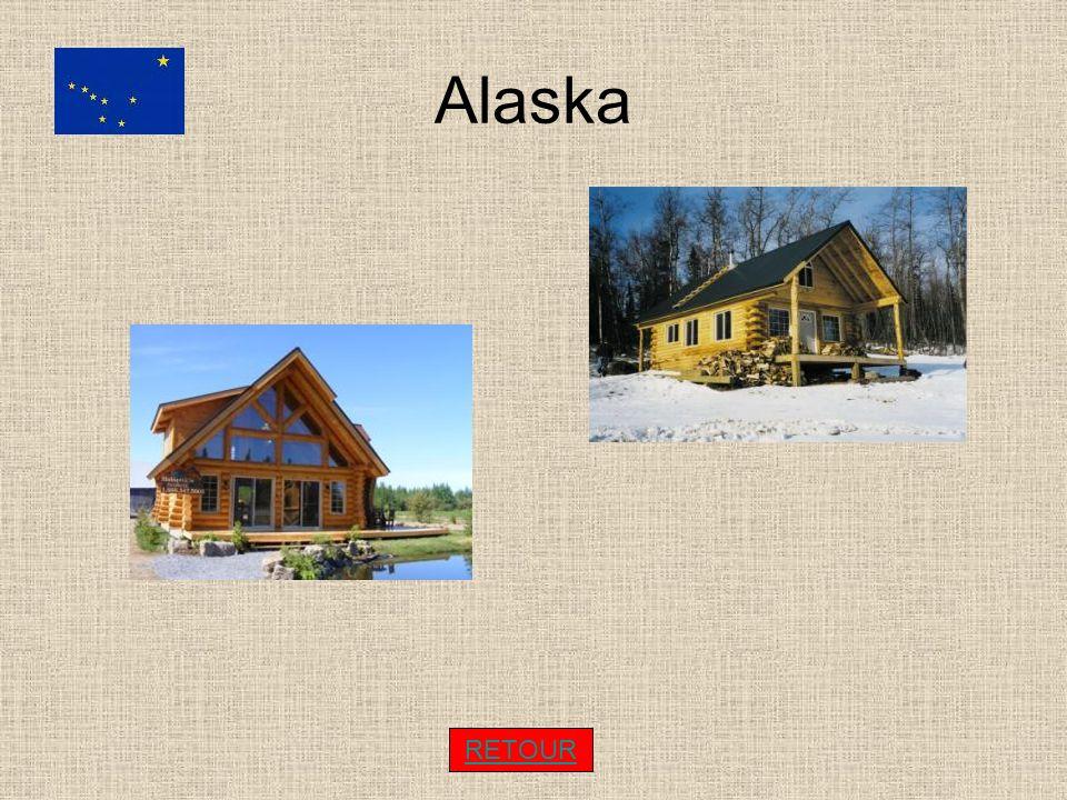 Alaska RETOUR