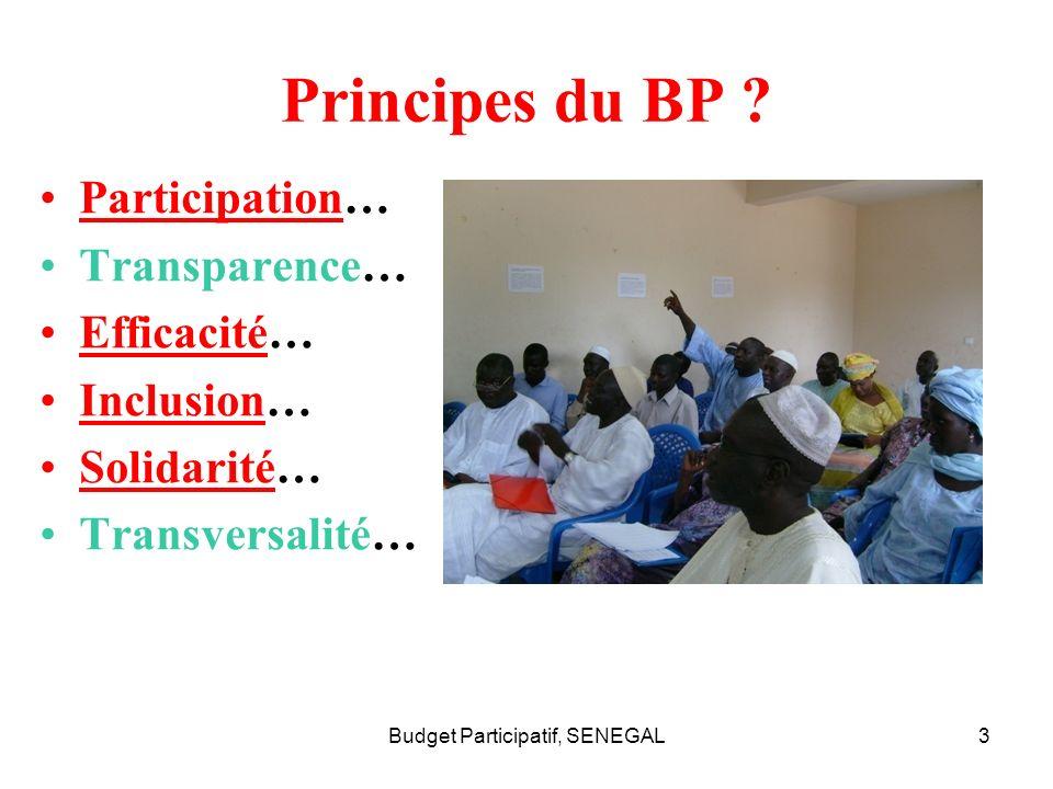Budget Participatif, SENEGAL3 Principes du BP ? Participation… Transparence… Efficacité… Inclusion… Solidarité… Transversalité…