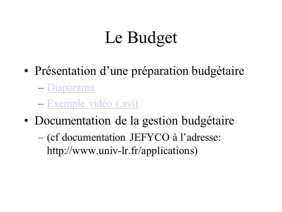 Le Budget Présentation dune préparation budgétaire –DiaporamaDiaporama –Exemple vidéo (.avi)Exemple vidéo (.avi) Documentation de la gestion budgétair