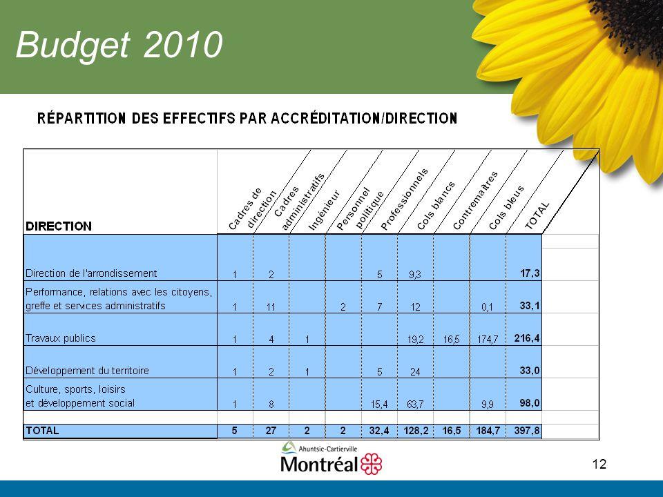 12 Budget 2010