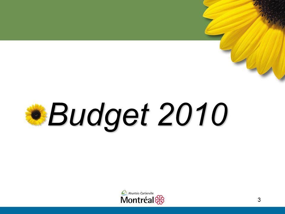 3 Budget 2010