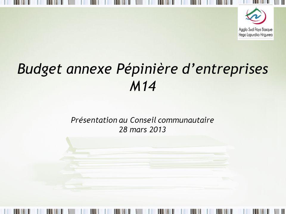 Budget annexe Pépinière dentreprises M14 Présentation au Conseil communautaire 28 mars 2013