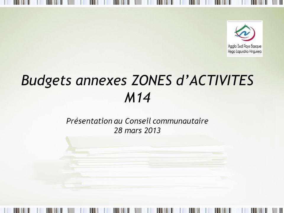 Budgets annexes ZONES dACTIVITES M14 Présentation au Conseil communautaire 28 mars 2013