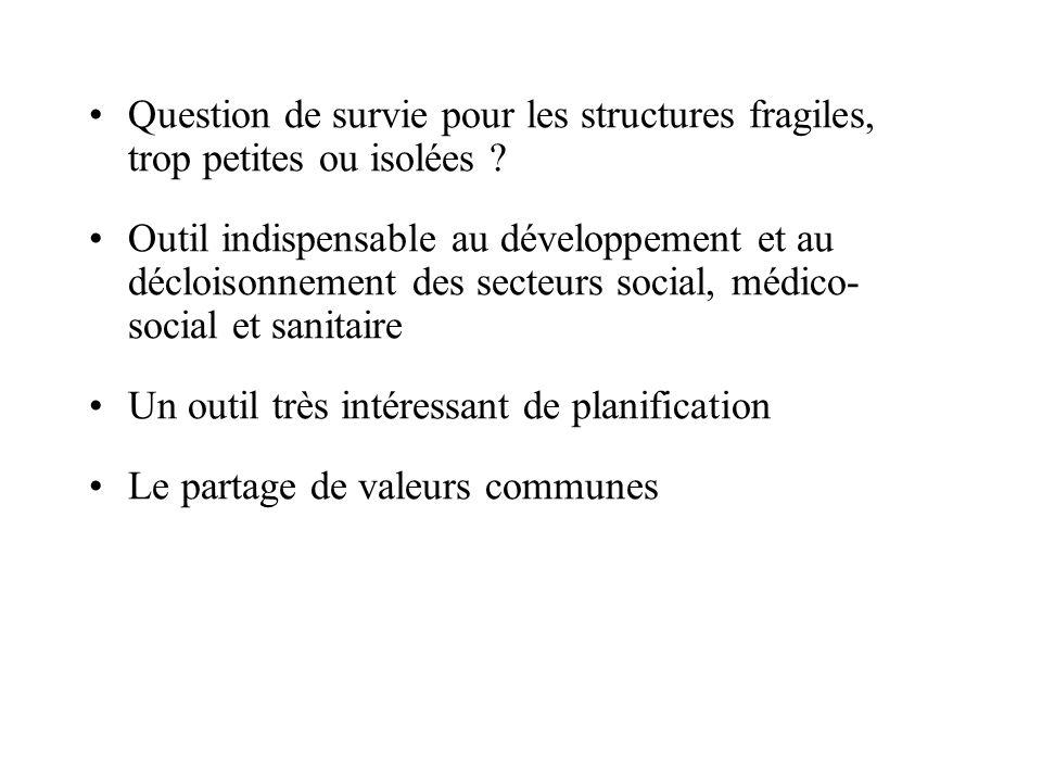 Question de survie pour les structures fragiles, trop petites ou isolées ? Outil indispensable au développement et au décloisonnement des secteurs soc