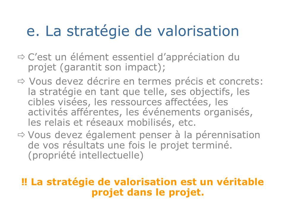 e. La stratégie de valorisation Cest un élément essentiel dappréciation du projet (garantit son impact); Vous devez décrire en termes précis et concre