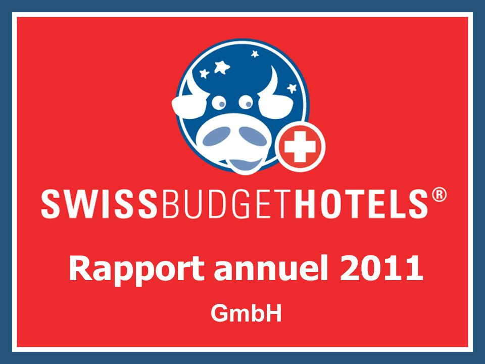 Rapport annuel 2011 GmbH