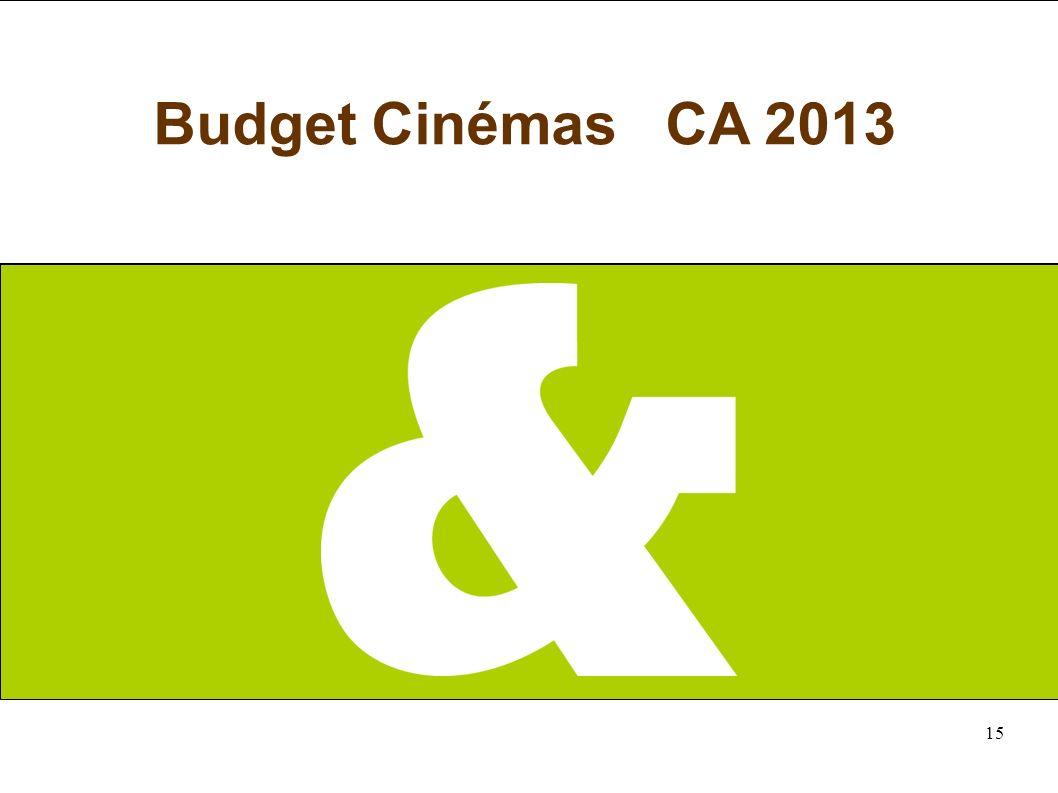 15 Budget Cinémas CA 2013