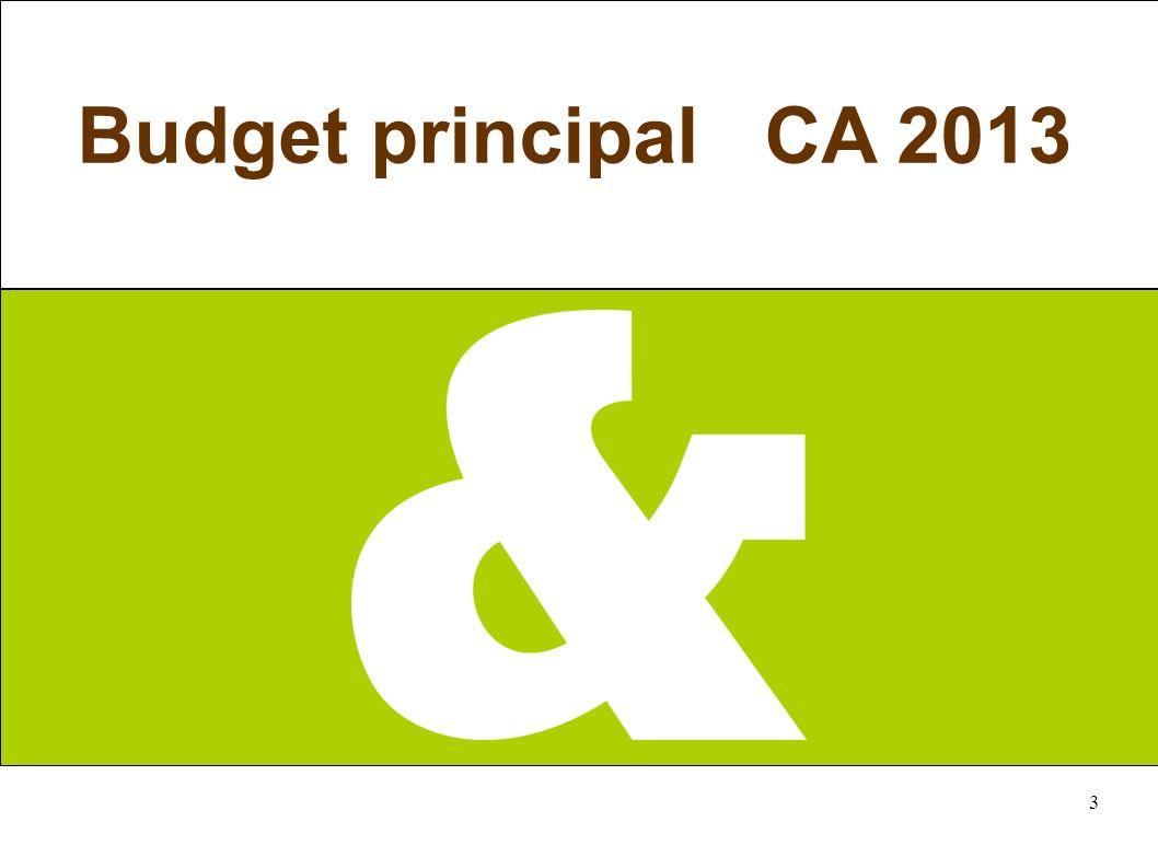 3 Budget principal CA 2013