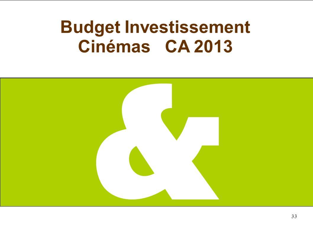 33 Budget Investissement Cinémas CA 2013