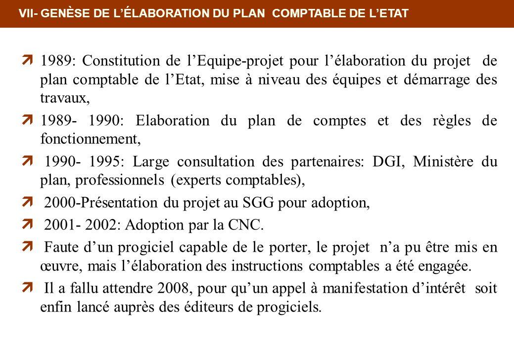 VII- GENÈSE DE LÉLABORATION DU PLAN COMPTABLE DE LETAT 1989: Constitution de lEquipe-projet pour lélaboration du projet de plan comptable de lEtat, mi