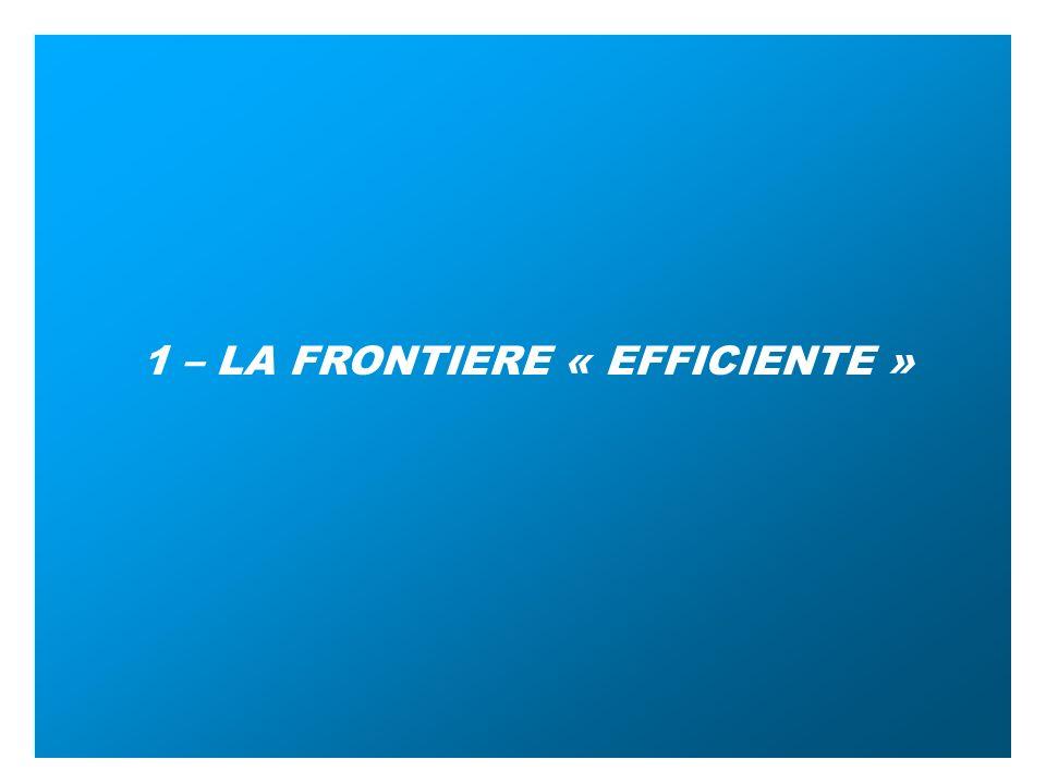 FRACTALES 2005 1 – LA FRONTIERE « EFFICIENTE »