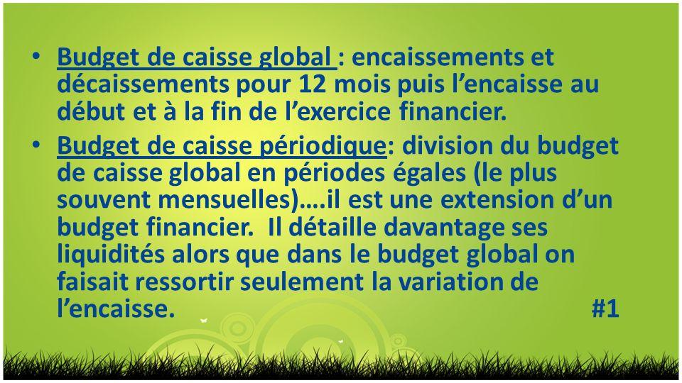 Budget de caisse global : encaissements et décaissements pour 12 mois puis lencaisse au début et à la fin de lexercice financier. Budget de caisse pér