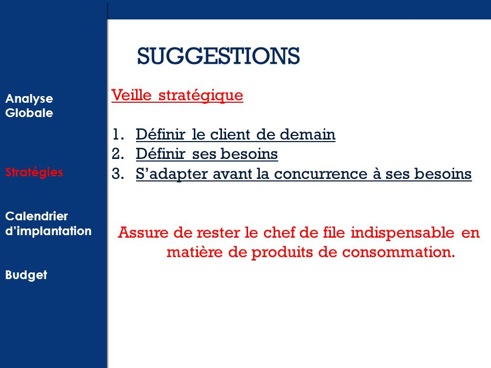 SUGGESTIONS Analyse Globale Stratégies Calendrier dimplantation Budget Analyse Globale Stratégies Calendrier dimplantation Budget Veille stratégique 1