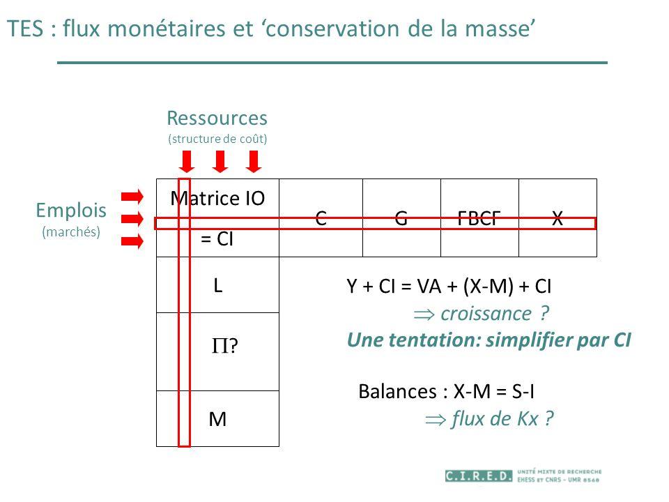 TES : flux monétaires et conservation de la masse Matrice IO = CI CGFBCF L M X Ressources (structure de coût) Emplois (marchés) Y + CI = VA + (X-M) +