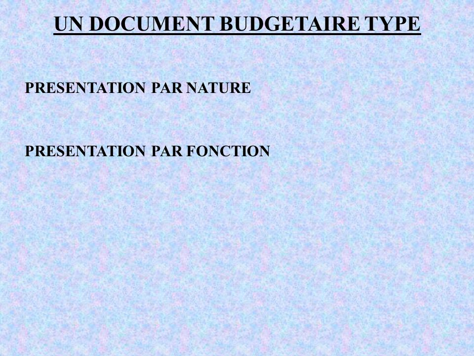 UN DOCUMENT BUDGETAIRE TYPE PRESENTATION PAR NATURE PRESENTATION PAR FONCTION