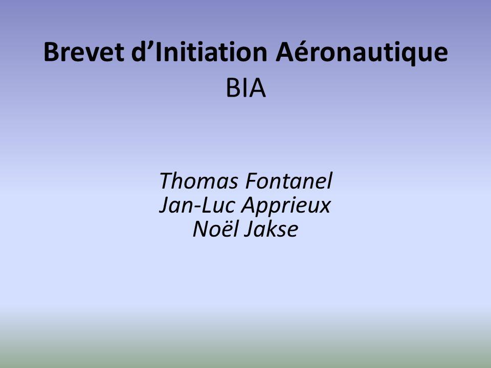 Brevet dInitiation Aéronautique BIA Thomas Fontanel Jan-Luc Apprieux Noël Jakse