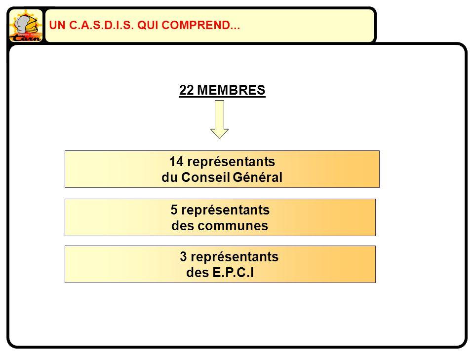 UN C.A.S.D.I.S. QUI COMPREND... 14 représentants du Conseil Général 5 représentants des communes 3 représentants des E.P.C.I 22 MEMBRES