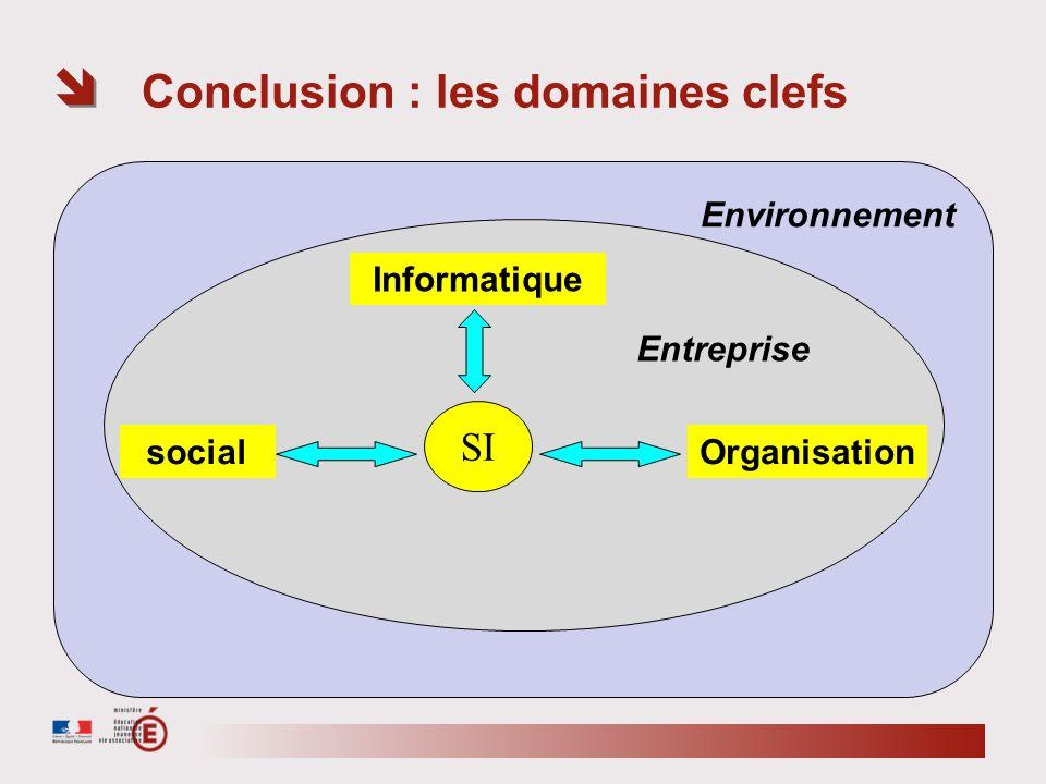 Environnement Entreprise Conclusion : les domaines clefs Informatique SI Organisationsocial
