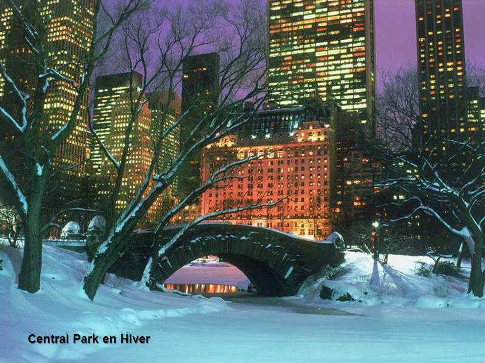Central Park représente une oasis de verdure au milieu de la forêt de gratte-ciel de Manhattan, même s'il est situé au nord de l'île où les édifices s