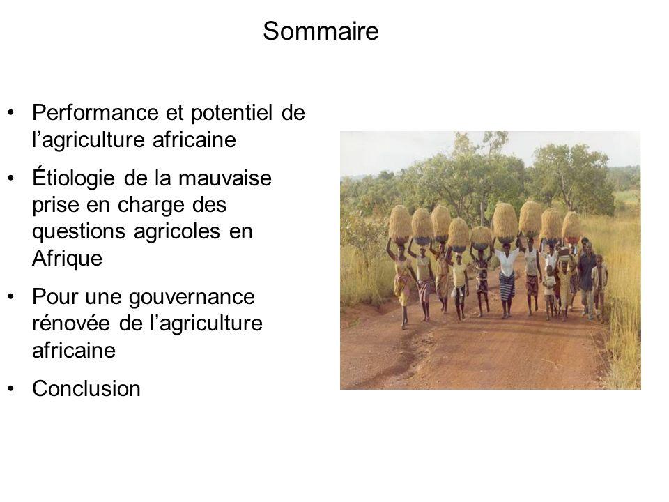 Performance et potentiel de lagriculture africaine